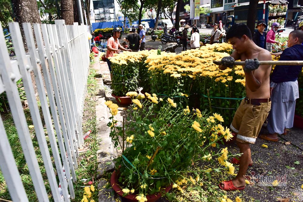Tiểu thương xé nát hoa khi giảm giá xuống 5.000 đồng/chậu mà vẫn không có người mua - Ảnh 5