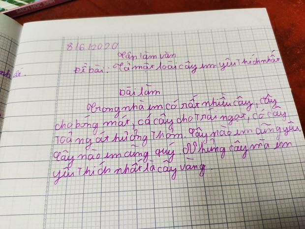 """Chết cười với bài văn tả cây của học sinh tiểu học, cô giáo cũng không ngờ """"bẻ lái"""" gắt đến thế - Ảnh 1"""
