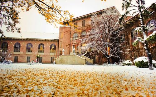 """Trường đại học Thanh Hoa đẹp tới cỡ nào mà được mệnh danh là """"Harvard châu Á""""? - Ảnh 9"""