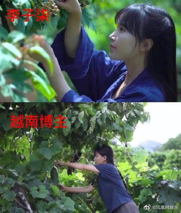 Lý Tử Thất Việt Nam bị nghi đạo nhái ý tưởng, netizen xứ Trung chỉ trích sau khi xem video - Ảnh 5