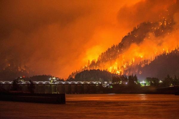Lỡ nghịch dại, thiếu niên 15 tuổi nhận án phạt 37 triệu USD vì gây cháy rừng kinh hoàng - Ảnh 4