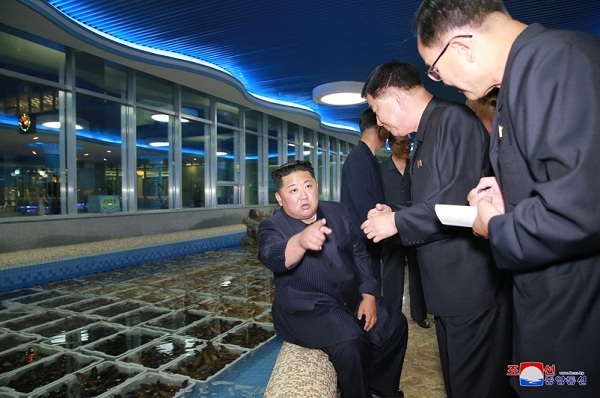 Ông Kim Jong-un bất ngờ thị sát nhà hàng hải sản ở Bình Nhưỡng trước khi sang Singapore - Ảnh 2