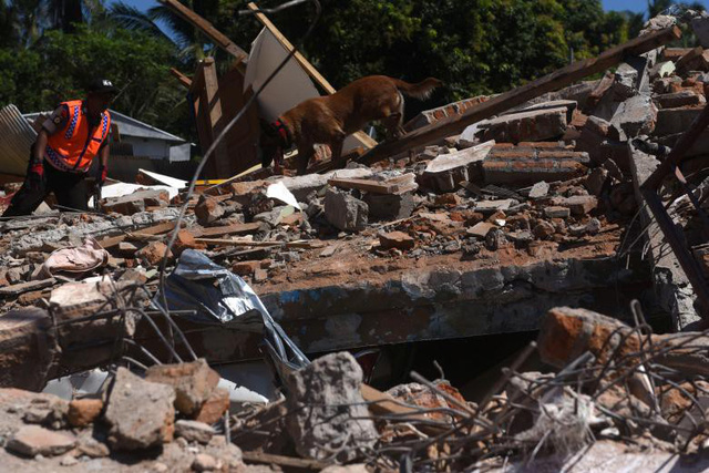 Động đất tại Indonesia: Số thương vong lên tới hơn 14.000 người - Ảnh 5