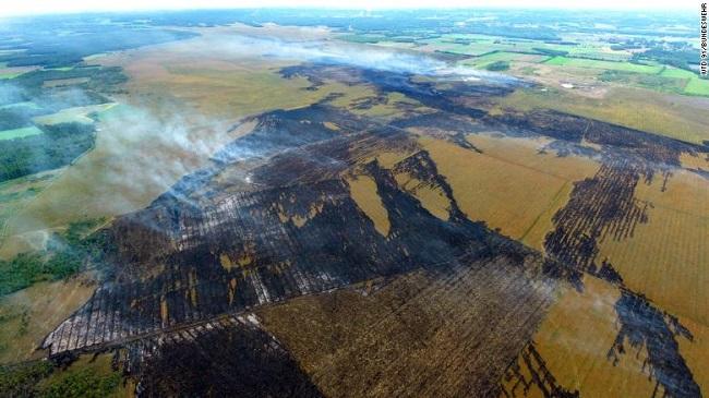 """Đội cứu hỏa """"vật lộn"""" với đám cháy rừng kéo dài suốt 3 tuần do Đức thử tên lửa - Ảnh 4"""