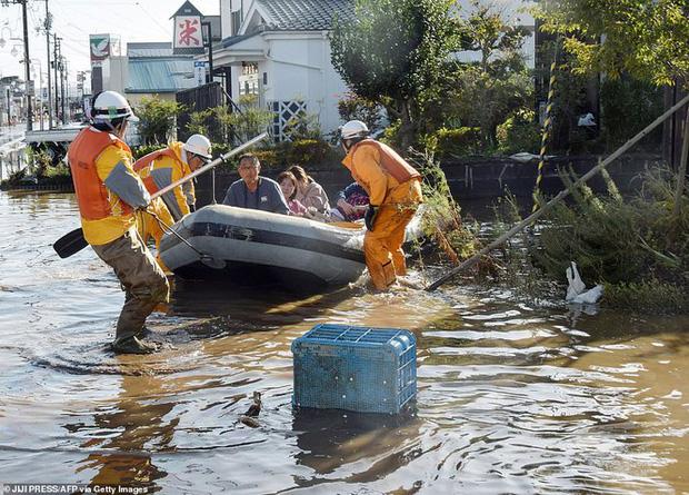 Khung cảnh tan hoang đến khó tin tại Nhật Bản sau khi siêu bão Hagibis đổ bộ - Ảnh 7