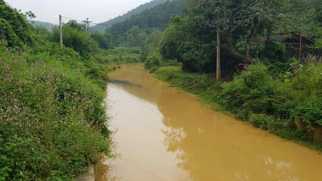 """Tổng giám đốc Công ty nước sạch Sông Đà: """"Công ty chúng tôi cũng là nạn nhân"""" - Ảnh 2"""