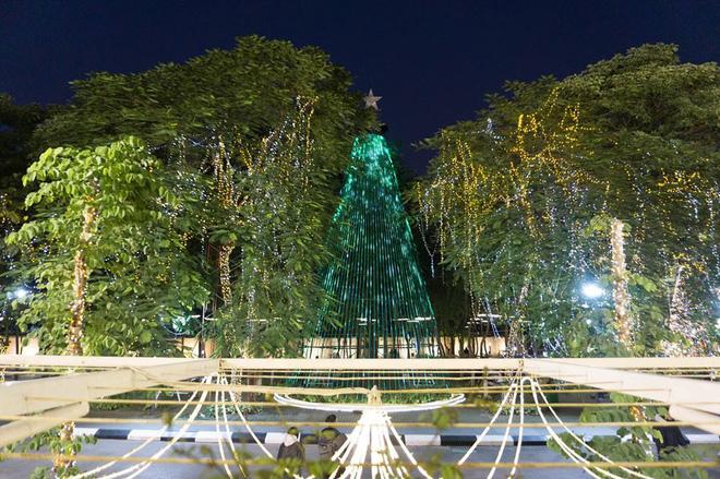 """Cận cảnh 3 cây thông Noel """"khổng lồ"""" được học sinh trang trí ngay trong sân trường cấp 2 ở Hà Nội - Ảnh 11"""