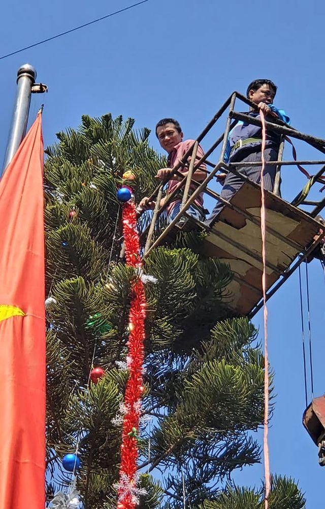 """Cận cảnh 3 cây thông Noel """"khổng lồ"""" được học sinh trang trí ngay trong sân trường cấp 2 ở Hà Nội - Ảnh 2"""
