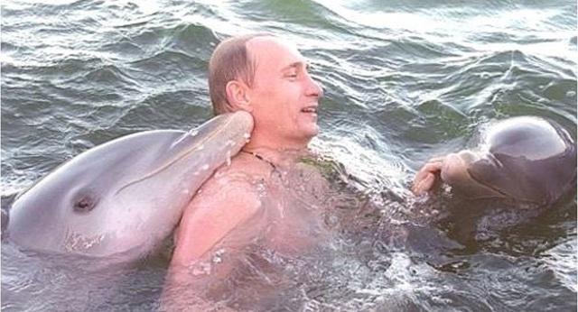 Điện Kremlin công bố clip hiếm ông Putin bơi cùng cá heo vượt sóng Cuba - Ảnh 1