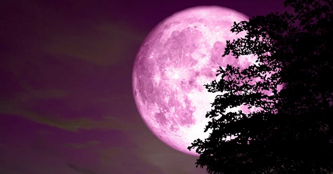 Hôm nay (19/4), hiện tượng trăng hồng độc đáo sẽ xuất hiện  - Ảnh 1