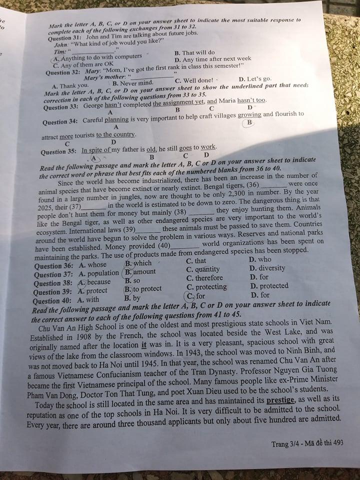 Đề thi môn tiếng Anh vào lớp 10 THPT tại Bắc Ninh chuẩn nhất - Ảnh 3