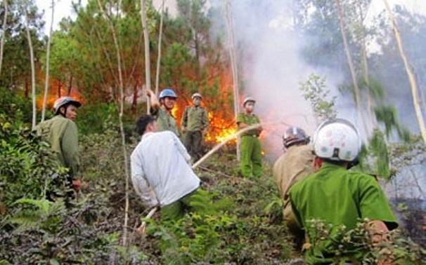 Hiện trường vụ cháy rừng kinh hoàng tại Nghệ An, gần 1000 người căng mình dập lửa - Ảnh 3