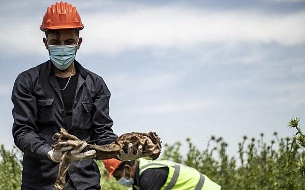Kinh hoàng phát hiện hố chôn tập thể tại Syria với 200 xác người bị bắn vào đầu  - Ảnh 1