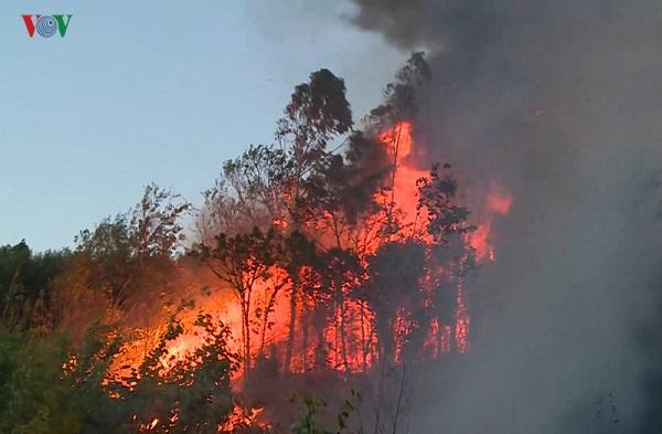 Hai vụ cháy rừng xảy ra liên tiếp cùng ngày tại Phú Yên, hàng trăm người nỗ lực dập lửa trong đêm - Ảnh 2