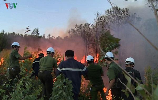 Hai vụ cháy rừng xảy ra liên tiếp cùng ngày tại Phú Yên, hàng trăm người nỗ lực dập lửa trong đêm - Ảnh 3
