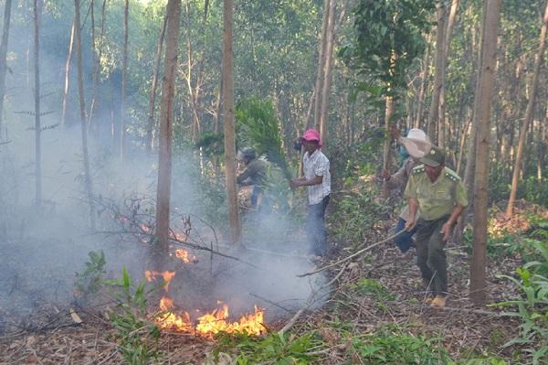 Hai vụ cháy rừng xảy ra liên tiếp cùng ngày tại Phú Yên, hàng trăm người nỗ lực dập lửa trong đêm - Ảnh 5