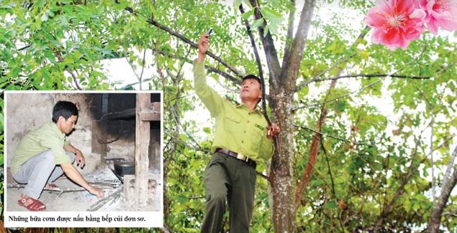 Tết không trọn vẹn của người gác rừng trên đỉnh Trường Sơn - Ảnh 1