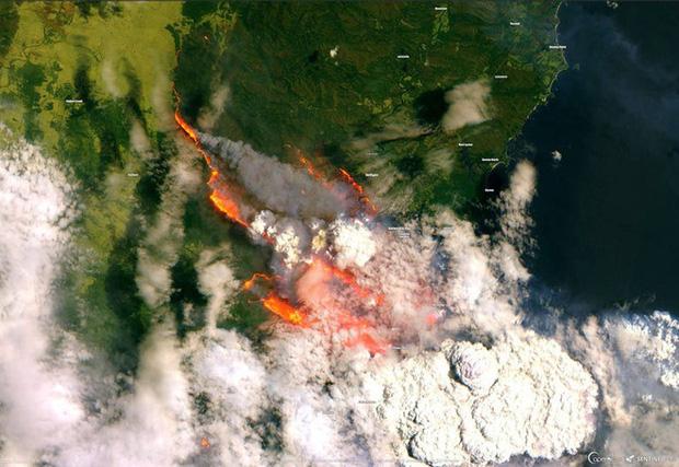 Những hình ảnh khiến người xem rớt nước mắt trong đại thảm họa cháy rừng ở Australia - Ảnh 1