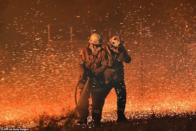 Những hình ảnh khiến người xem rớt nước mắt trong đại thảm họa cháy rừng ở Australia - Ảnh 3