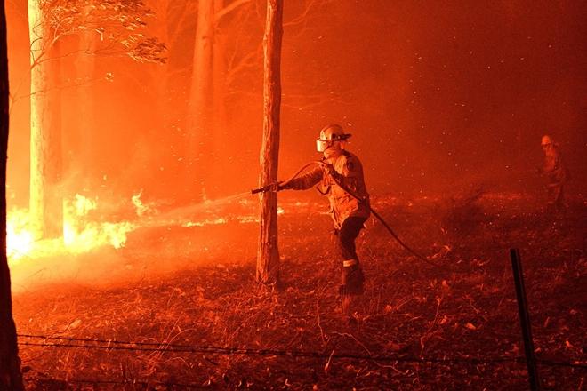 Những hình ảnh khiến người xem rớt nước mắt trong đại thảm họa cháy rừng ở Australia - Ảnh 4