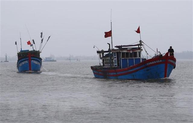 Hai tàu cá gặp nạn khi đang chạy bão số 9, hàng chục thuyền viên mất tích - Ảnh 1