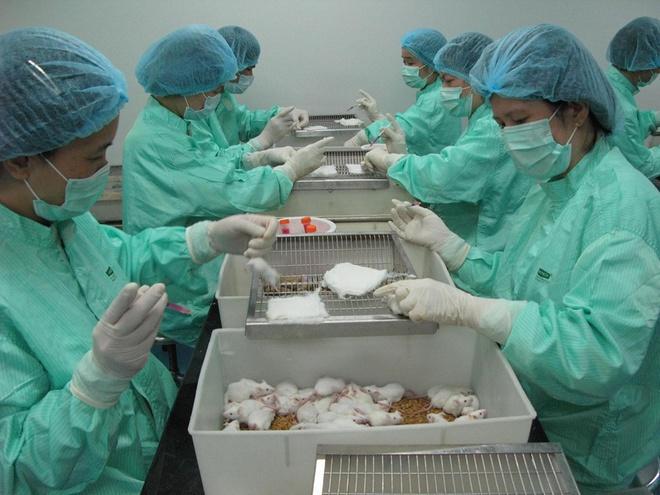 Việt Nam thử nghiệm lâm sàng vaccine COVID-19 trên người vào tháng 11 - Ảnh 1