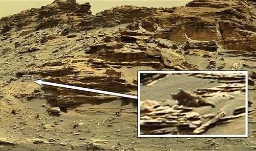 Thợ săn UFO phát hiện 'thằn lằn ngoài hành tinh' trên Sao Hỏa - Ảnh 1