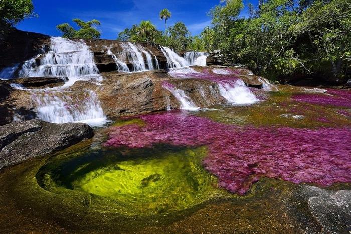 """Ngỡ ngàng trước vẻ đẹp đầy mê hoặc của dòng sông ngũ sắc """"chảy xuống từ thiên đường"""" - Ảnh 2"""