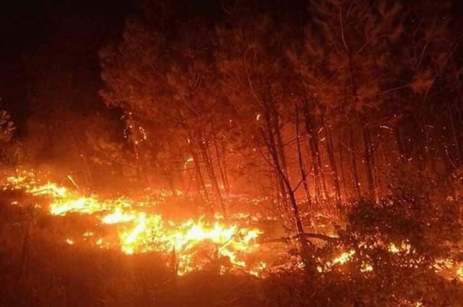 Rừng ở Hà Tĩnh, Nghệ An cháy ngùn ngụt, đỏ rực trời trong đêm - Ảnh 1