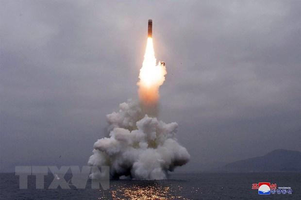 Tin tức quân sự mới nhất ngày 24/3: Nga trang bị vũ khí mới cho tàu ngầm hạt nhân đa nhiệm - Ảnh 2