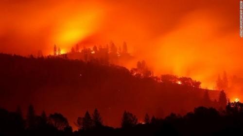 Thảm họa cháy rừng ở California: Tiến hành nhận dạng các nạn nhân qua ADN - Ảnh 1