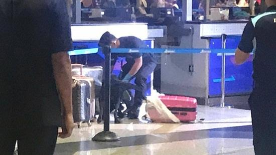 Hai hành khách người Việt bị bắt giữ tại Malaysia vì nói hành lý chứa bom - Ảnh 1