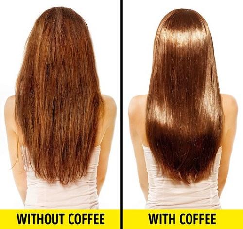 Không chỉ dùng để uống, cà phê còn có công dụng dưỡng tóc, diệt bọ ở thú cưng - Ảnh 6