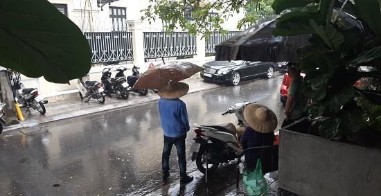 Hà Nội: Mưa lớn giữa trưa nắng, người dân mừng như bắt được vàng - Ảnh 4