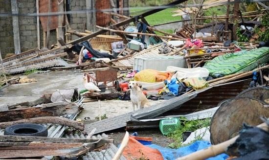 Cận cảnh sức tàn phá ghê gớm của siêu bão Mangkhut tại Philippines - Ảnh 8