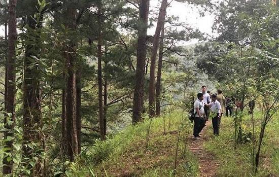 Đà Lạt: Du khách Hàn Quốc tử vong khi tham gia thử thách nhảy thác mạo hiểm - Ảnh 1