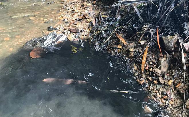 Vụ nghi đổ trộm dầu thải gây ô nhiễm nguồn nước sông Đà: Bắt khẩn cấp 2 đối tượng - Ảnh 1
