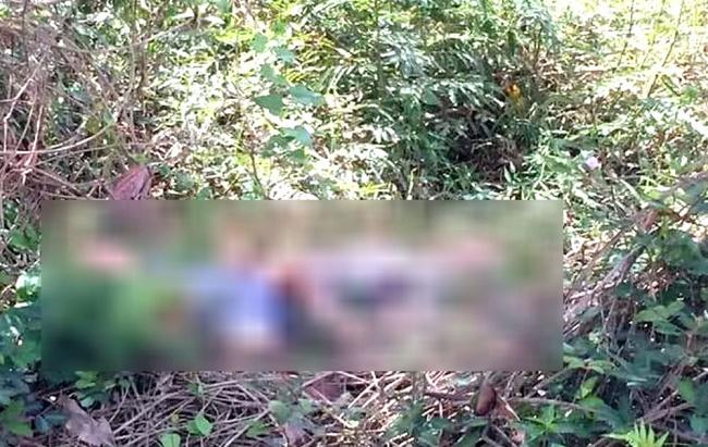 Lâm Đồng: Bàng hoàng phát hiện nam nhạc công tử vong bất thường bên bờ suối - Ảnh 1