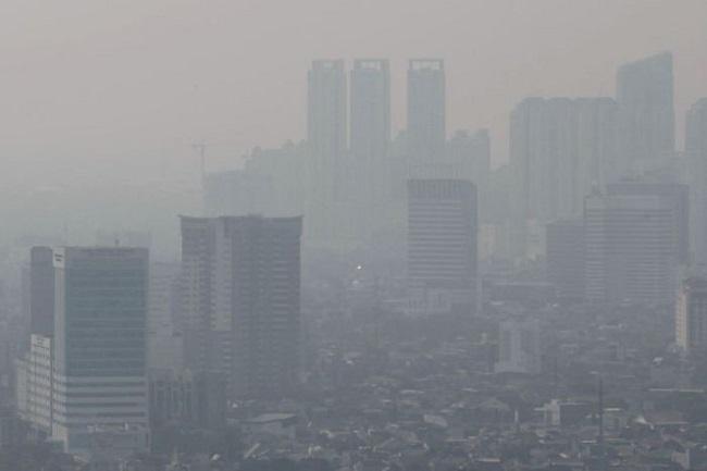 Bụi mịn gia tăng trong không khí, bộ Y tế hướng dẫn cách bảo vệ sức khỏe - Ảnh 1