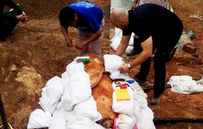 Quảng Bình: Phá thành công quả bom nặng gần 350kg còn sót lại sau chiến tranh - Ảnh 2