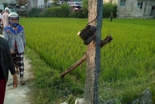 Nghệ An: Thương tâm bé trai ra đồng bắt cua với bố bị rắn cắn nguy kịch - Ảnh 2