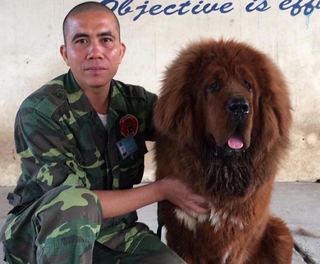 Chuyên gia huấn luyện chó nghiệp vụ: Nếu bỏ chạy, chó sẽ hiểu bạn là con mồi - Ảnh 1