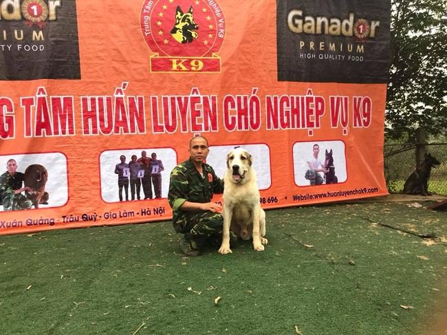 Chuyên gia huấn luyện chó nghiệp vụ: Nếu bỏ chạy, chó sẽ hiểu bạn là con mồi - Ảnh 2