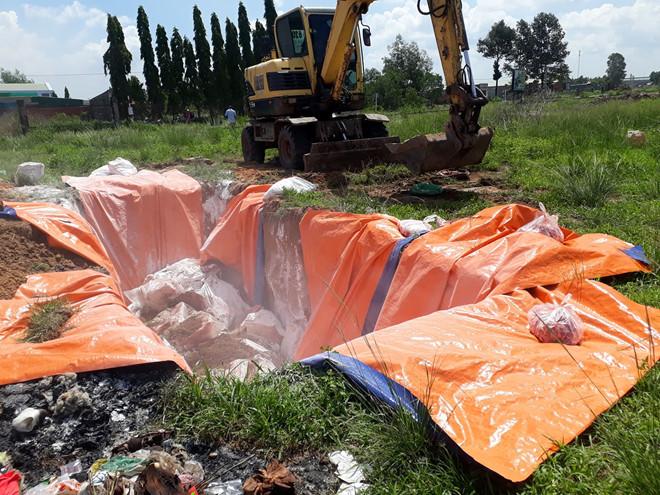 Phát hiện 4,2 tấn thịt nhiễm dịch tả lợn châu Phi ở Đồng Nai: Khởi tố vụ án - Ảnh 1