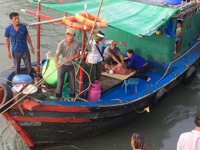 Vụ bé trai 4 tuổi rơi xuống biển mất tích ở Quảng Ninh: Đã tìm thấy thi thể nạn nhân - Ảnh 1