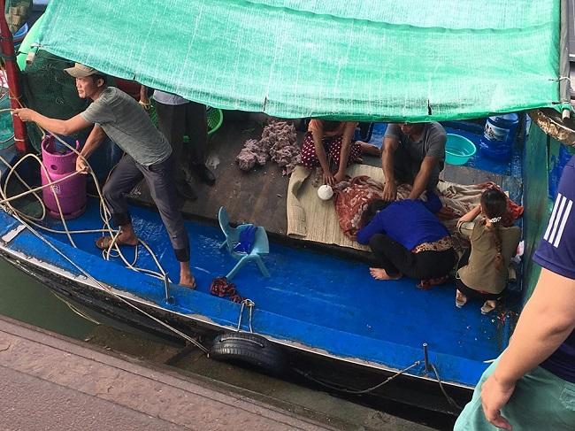 Vụ bé trai 4 tuổi rơi xuống biển mất tích ở Quảng Ninh: Đã tìm thấy thi thể nạn nhân - Ảnh 2