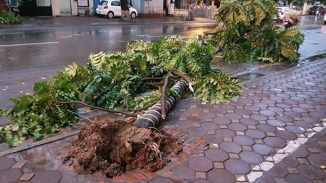 """Hà Nội đón mưa lớn giải nhiệt sau nhiều ngày nắng nóng, đường phố bỗng """"hóa thành sông"""" - Ảnh 7"""