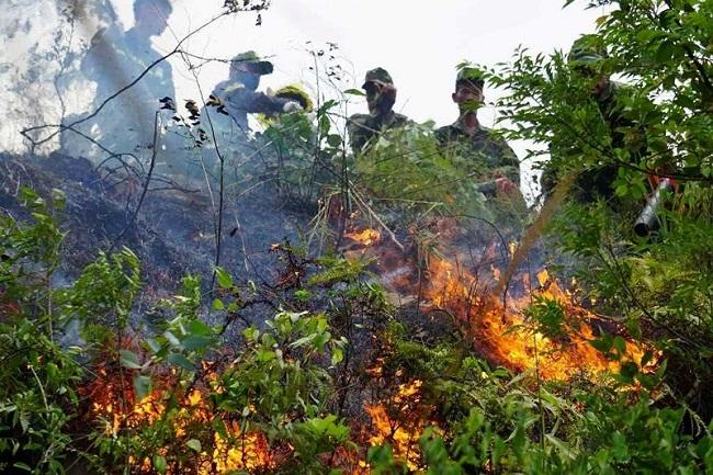 """Đà Nẵng: 3 giờ chiến đấu với """"giặc lửa"""", khống chế thành công đám cháy rừng tự nhiên - Ảnh 2"""