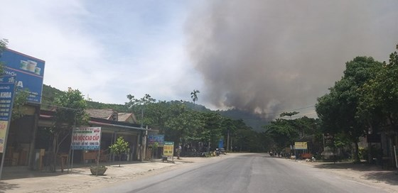 Lại xảy ra cháy rừng tại Hà Tĩnh, hàng trăm người tham gia dập lửa - Ảnh 2