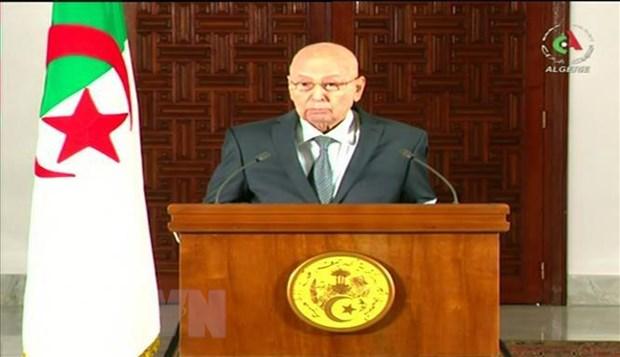 22 ứng cử viên đăng ký tranh cử Tổng thống tại Algeria - Ảnh 1
